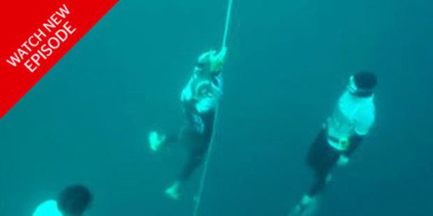 Loading William Trubridge has attained his 16th World Record, breaking his own record by diving 122 metres today.