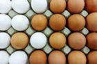 Once thought to be bad for the heart, eggs are now known to be packed with protein. Photo / Getty