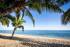 Fiji. Photo / iStock