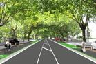The historic trees will have their roots protected from vehicles by redefining the berm area, the council says. Photo / at.govt.nz