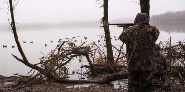 The duck shooting season has begun. Photo / iStock