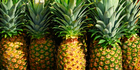 Some fabric is now being made from pineapple stems. Image / iStock