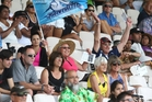 The crowd enjoys the atmosphere at last year's Bayleys National Sevens tournament.