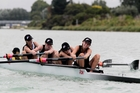 DIGGING DEEP: Hawke's Bay novice girls' coxed four No2 crew of coxswain Sarah Forster, Christina Rice, Carys McCrory, Briana Herbert and Ella Daly on their way to victory PHOTO/Warren Buckland