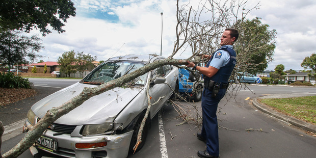 A police officer deals with the wreckage. Photo / Supplied, Daniel Hines