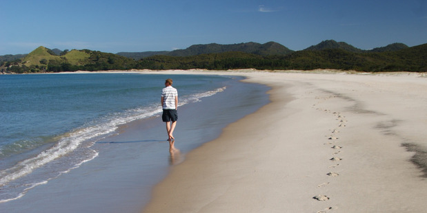 Great Barrier's majestic beaches like Kaitoke are only a half-hour flight from Auckland.