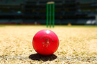 But maybe this episode is more about the cricket than the porn. Photo / Getty Images
