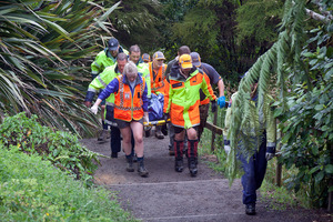 Drowning at Kaiate Falls, Welcome Bay, Tauranga. Photo/file