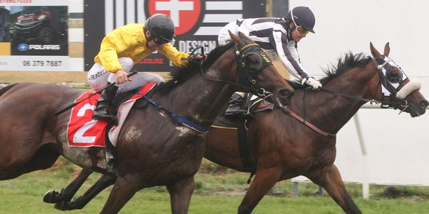 Interislander Summer Festival Tauherenikau Races. Lisa Riddell, riding Ballybay (rear) wins ahead of Jonathan Riddell on The Bandito in the Wairarapa Times-Age 1000m. PHOTO/ANDREW BONALLACK