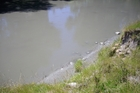 Silt released from the Waihi Dam has found its way into Waiau River.