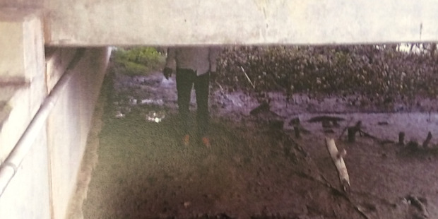 Photo taken by an undercover police officer showing Kamal Reddy standing on the spot where he allegedly buried his partner and her child Police. Photo / Supplied