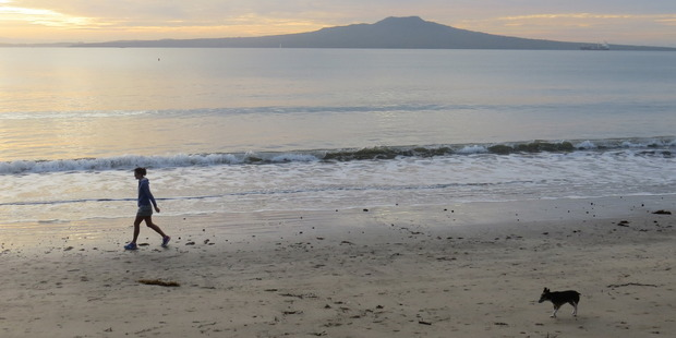Takapuna Beach is well used but is more fun needed?