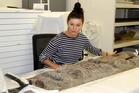 EXPERT: Conservator Rose Evans examining the carvings found in Kaitaia earlier this year at Te Ahu Heritage Museum.
