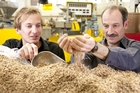 Materials scientist Damien Even and business development manager Jeremy Warnes, members of Scion's wood fibre dice development team.