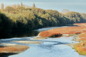 The Tukituki River shimmers on a clear autumn day. Photo / Warren Buckland