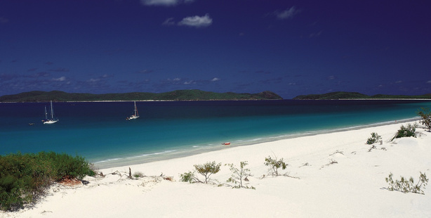 Whitehaven Beach, Whitsunday Island. Photo / Supplied
