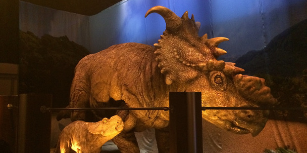 Triceratops dinosaurs at the Jurassic World exhibition. Photo / David Farrier