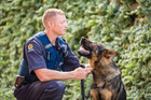Police dog Gazza with handler Josh Robertson, who has spoken about what a special dog he was. Photo / Facebook