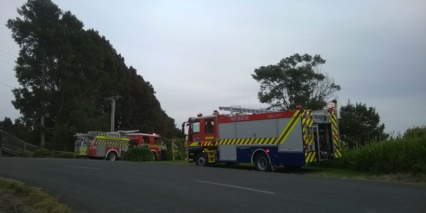 Fire fighters at the scene of a light plane crash in Tauranga.