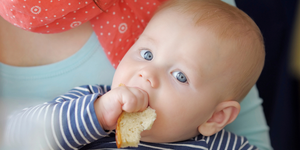 Baby-led weaning, in which parents allow infants from around 6 months of age to feed themselves with finger foods, is becoming an increasingly popular alternative to spoon-feeding. Photo / iStock