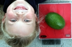 BIG 'UN WITH A LITTLE 'UN: Gonville School student Chelsea Moorhouse, 9, and the giant feijoa grown at the school.PHOTO/STUART MUNRO