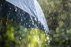MetService said Fiordland could expect 120mm of rain in a nine-hour period starting this evening. Photo / iStock