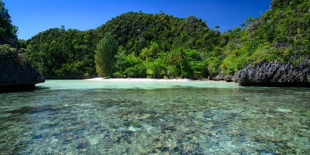 Wayag Beach is fringed by coral reef and surrounded by greenery. Photo / Supplied