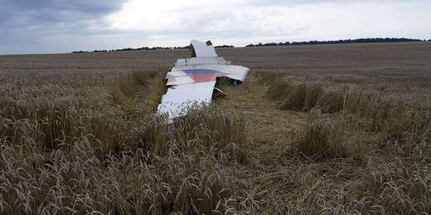 A piece of debris lies in a wheat field at the site of the crash site of Malaysia Airlines MH17. Photo / Getty Images