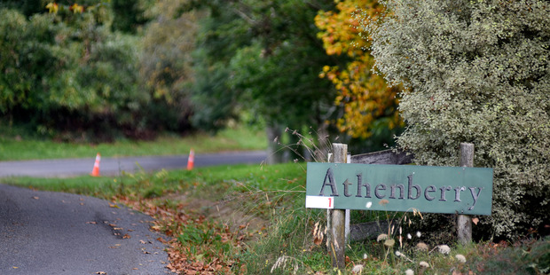 A kiwifruit contractor died in a workplace accident at Athenberry Orchard on Friday. Photo/George Novak