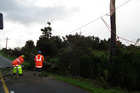 Buller Electricity linemen repair power lines felled when lightning blasted a nearby white pine on Stafford Street. Photo / Lee Scanlon