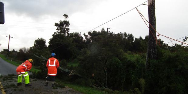 Buller Electricity linemen repair power lines felled when lightning blasted a nearby tree on Stafford St in Westport. Photo / Lee Scanlon