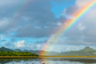 Aucklanders can expect a cloudy day with showers and a high of 19C. Photo/ iStock