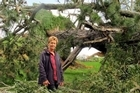 Wendy Dudek assessed the damages in her property after a 100-year-old pine tree fell down onto her property. Photo/John Borren