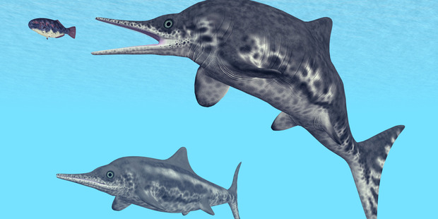 A computer generated 3D illustration of an Ichthyosaur. Photo / Getty Images