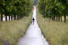 A woman runs with her dog in Frankfurt, Germany. The Government is adopting a carrot and stick approach to refugees. Photo / AP