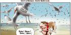 View: Cartoon: Dean Lonergan - Boxer watch dog