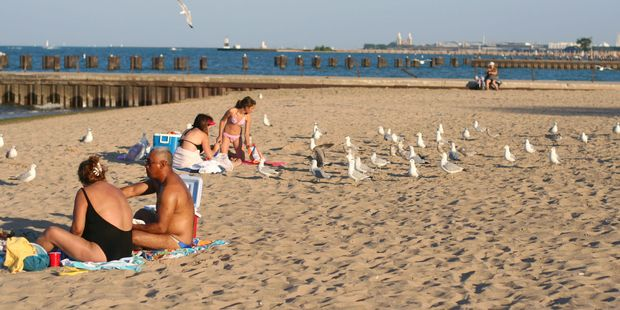 People enjoying the sun at Uptown beach on the shores of lake Michigan.