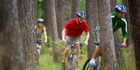 Mountain biking in Hanmer Springs Forest, Canterbury. Photo / chrischurchnz.com