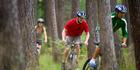 Mountain biking in Hanmer Springs Forest, Canterbury. Photo / chrischurchnz.com