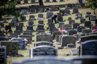 Nearly 1800 sets of ashes dating back as far as the 1920s and buried in vaults at Waikumete Cemetery must be treated with sensitivity and respect, says the council. Photo/ Jason Dorday