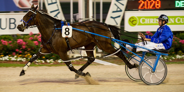 Dream About Me won at the New Zealand Oaks at Addington. Photo / Dean Purcell