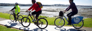The public are being asked where they would like cycle routes in Meadowbank, Orakei, Remuera, Newmarket, Grafton and Parnell. Photo/Natalie Slade