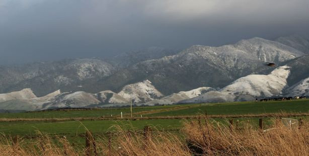 Dark clouds gather above snow on the foothills behind Rua Roa, Dannevirke. Photo / Christine