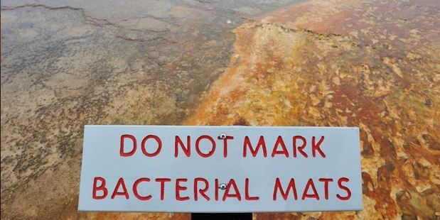 When people walk on the bacterial mats of the hot spring it makes white footprints and causes damage.  Photo / imgur
