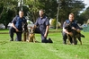Senior Constable Kayne Cording, with Mario, Sergeant Logan Marsh with one of the newest police dog recruits nicknamed G-dog, and Constable Mark Chapman with Veto. Photo / George Novak