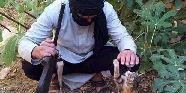 Isis has seized on the internet cat craze.