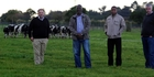 CATTLE MEN: Land Based Training managing director Rob Gollan, Botswana's director of animal production Dr T.K. Phillemon-Motsu, Botswana agricultural tutor trainer Seabelo Molefhi and Land Based Training operations manager James Towers.PHOTO/ STUART MUNRO