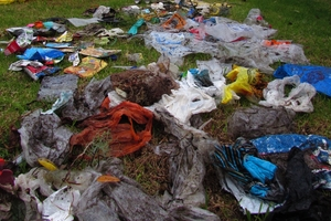 Some of the piles of rubbish Jasmine found at Urquharts Bay. Photo / Anita Hollis