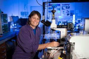 Engender Technologies builds off the cutting-edge photonics work of Associate Professor Cather Simpson. Photo / Supplied