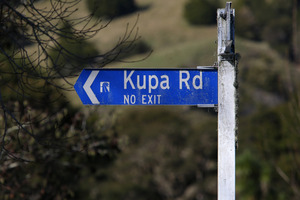 Emergency services were called to the incident on Kupa Rd in Motatau about 6.30pm, a police spokeswoman said.